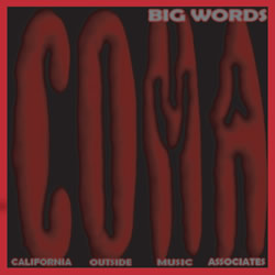 C.O.M.A. Big Words